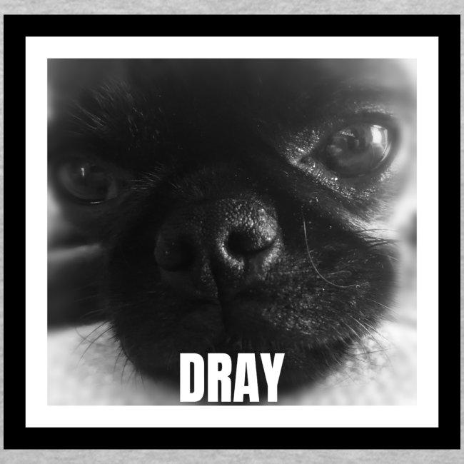 Drayconic Dog Frame Design