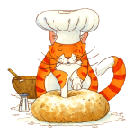 Chef Cat by Rachael B.