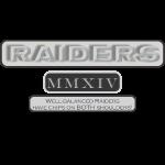 RAIDERS MMXIV