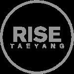 Rise - Bigbang Taeyang - Grey