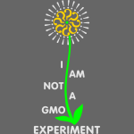 I am Not a GMO Experiment v2.0