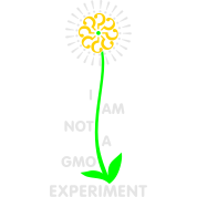 I am NOT a GMO Experiment - v2