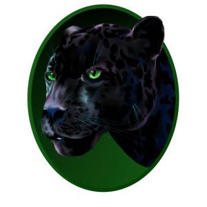 Big Black Jaquar