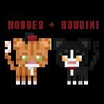 Hobbes + Houdini