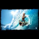 Shark Surfing Bear