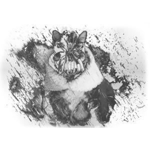 banecat image shirt2.png