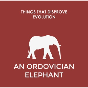 An ordovician elephant