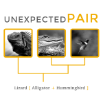 Unexpected pairs