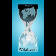 Design ~ WikiLeaks Logo Phone Case