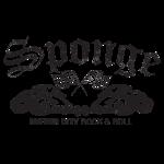 Sponge HotRod