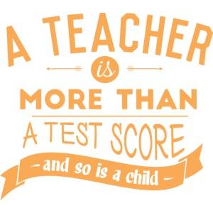 More Than a Test Score