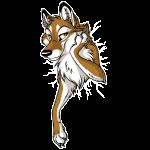 STUCK Wolf Caramel (front