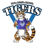 Team TIGERS Blue