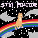 StayPositiveCat.png