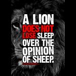 a lion picture