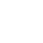 Jonas Brothers In Town