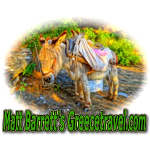 Greecetravel Donkey.jpg