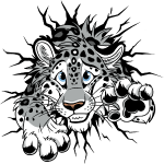 STUCK Snow Leopard front