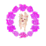 Toothfairypixie's Peony Wreath Tee