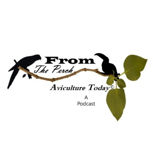 From The Perch Logo