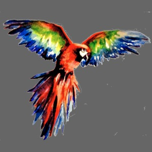 watercolormacaw