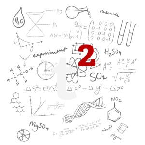 t2 Equations PRIVATE