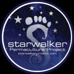 Starwalker tee design