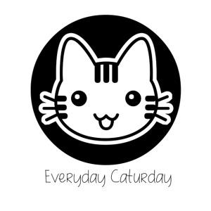 Caturday Cat.png