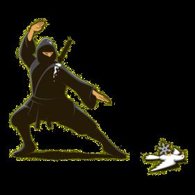 Funny Vindictive Ninja