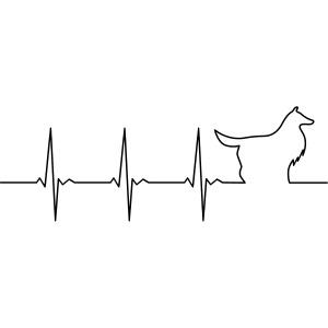 Heart Collie