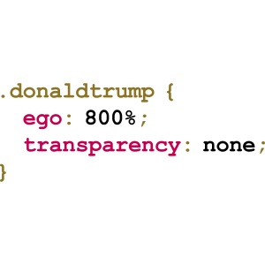 Donald Trump's Style Sheet