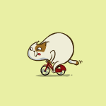 Bicycat — Friday Cat №46