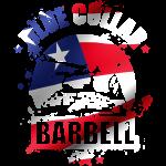 american logo.png