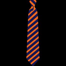 2 Color Sports Tie