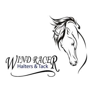 Wind Racer Logo png