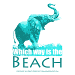 Which way is the beach ts