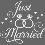 Lesbian Bi Pan Trans Queer Just Married LGBT Pride