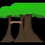 Trees n' stuff