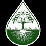 tshirtbig_logo_green2.png