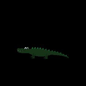 im the little gator