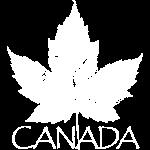 Canada Souvenir Vintage Canada Shirts