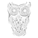 the owl totem