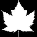 White Maple Leaf Souvenirs Classic Canada Flag Art