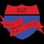 BQE_Brand_T_2colorTw
