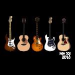 Niall Guitar
