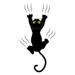 VK Cat