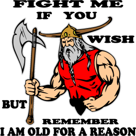 Fight Me But Remember I Am Old For A Reason Viking