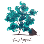 Teal Tree PNG