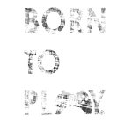 BORN 2 Play BIG