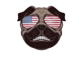 4th July Amrican dog 4th